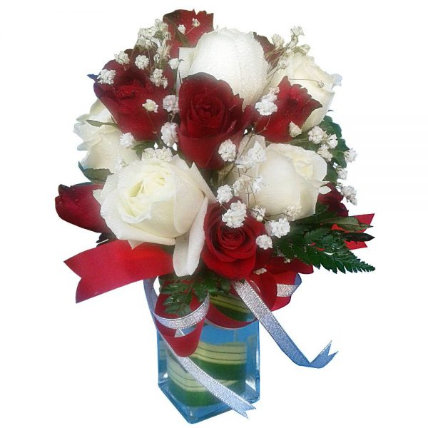 Redand White Roses in a vase