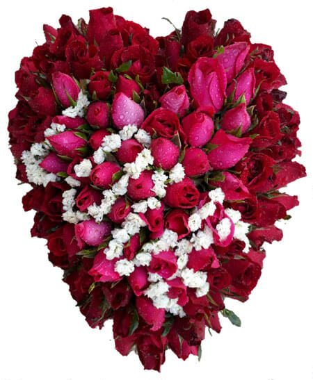 Rose Flower Love: Flowers By Jack