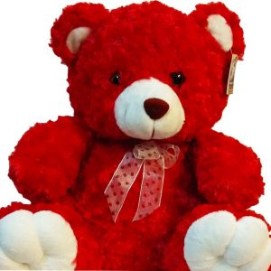 Cute Red Teddy Bear approximately 40cm high, close up
