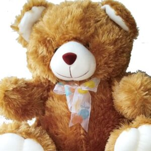 Cute traditional brown Teddy Bear approximately 40cm high close up