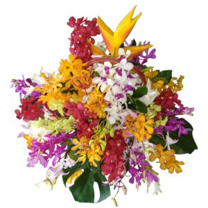 Selection of different orchids and tropical flowers in a basket
