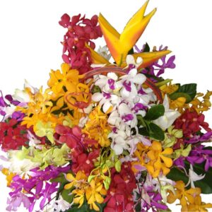 Selection of different orchids and tropical flowers in a basket close up