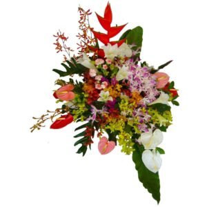 Selection of seasonal tropical flowers in a basket