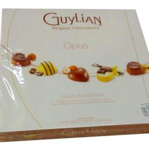Box of Guylian Opus Chocolate 180 gram, close up